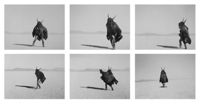 Adrian Stimson - The Shaman Exterminator Playing on the Playa