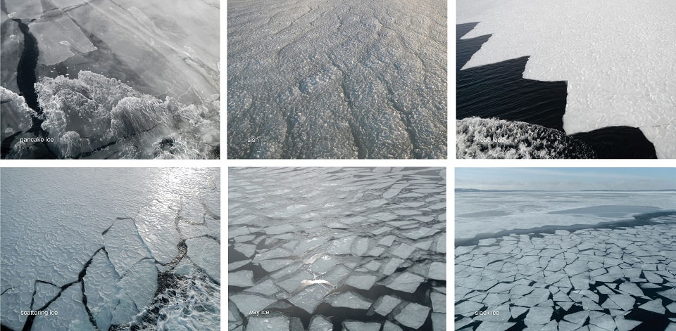 photos of ice in Conception Bay, Newfoundland, March 2014