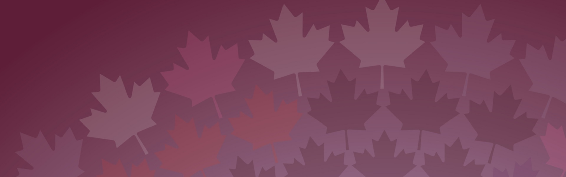 a drawing of maple leafs, taken from the Official Language's Act 50th anniversary banner